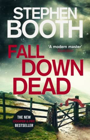 Fall Down Dead af Stephen Booth